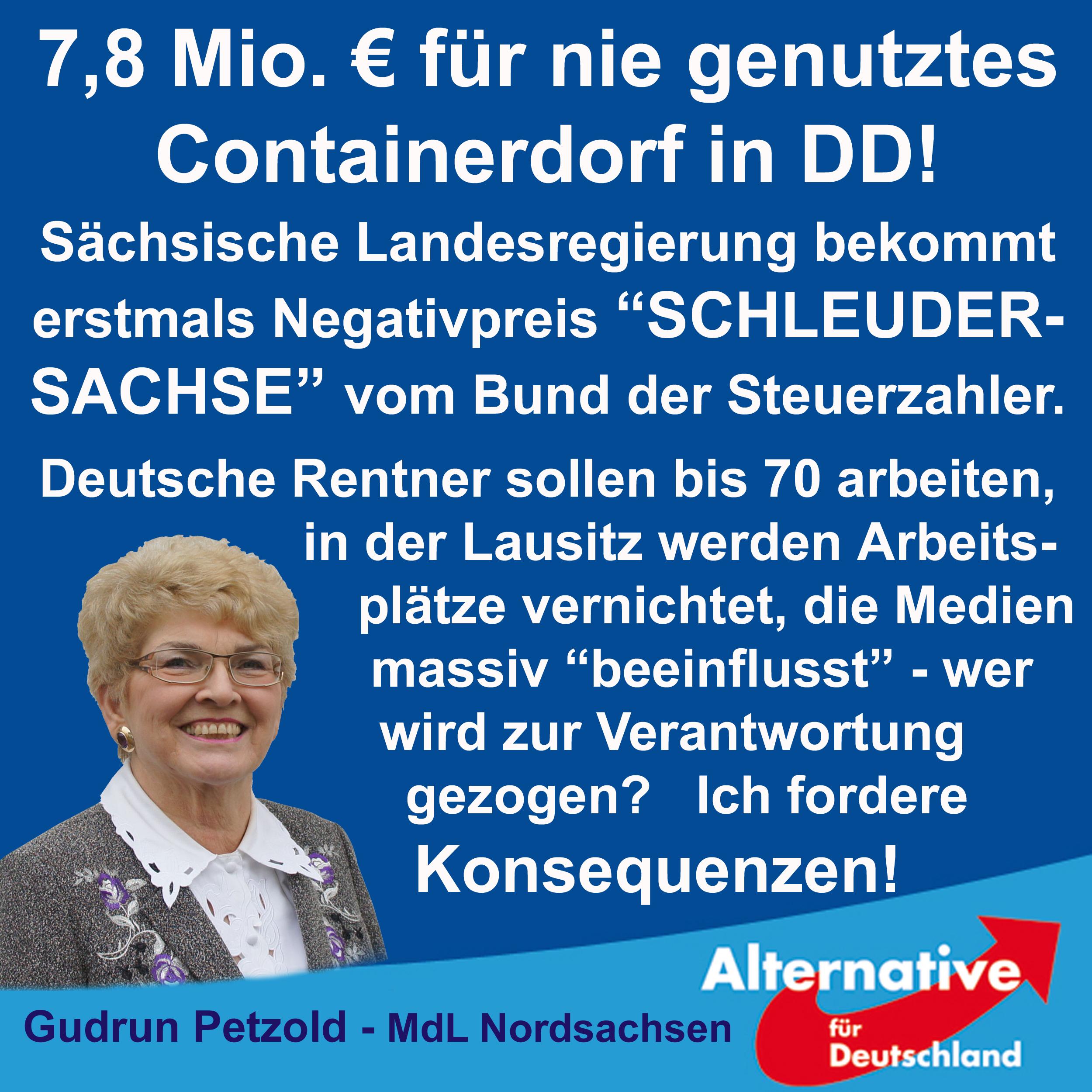 """Negativpreis """"Schleudersachse"""""""
