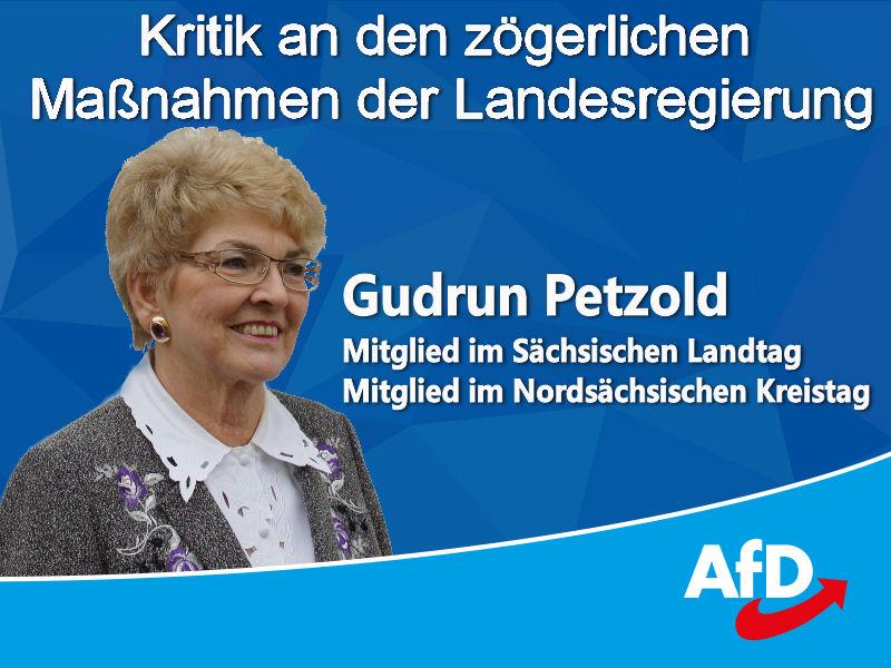Die Landtagsabgeordnete Gudrun Petzold gibt weitere Informationen zur Corona-Pandemie